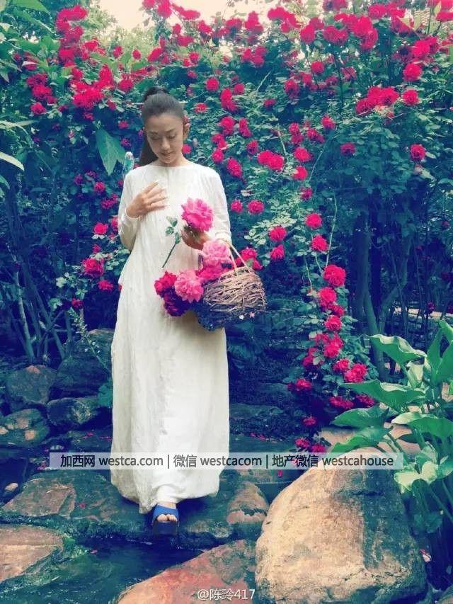 她年近60未婚无子 却活成仙女模样 - 妮子 - 妮